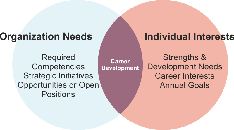 career competence